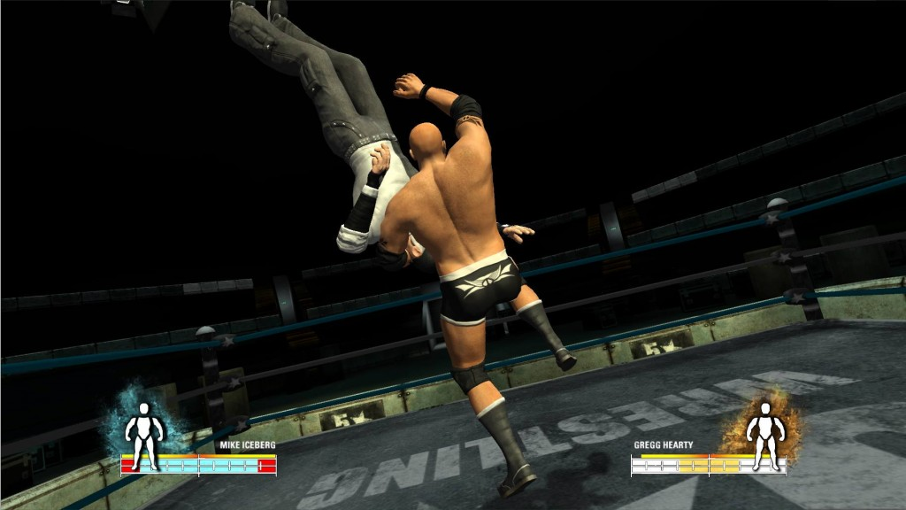 5 Star Wrestling Review Image 2